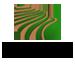 Marvalhas Logo