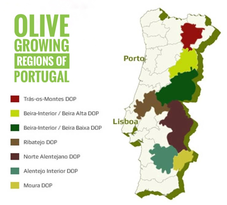 Olive Growing Regions of Portugal